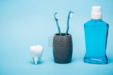 Toothbrushes, tooth model and bottle of mouthwash on blue background