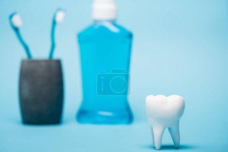 Photo pour Vue rapprochée du modèle de dent près du rince-bouche et des brosses à dents floues sur fond bleu - image libre de droit