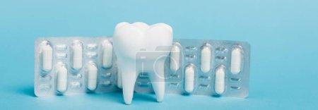 Weißes Modell von Zahn und Blister mit Pillen auf blauem Hintergrund, Banner