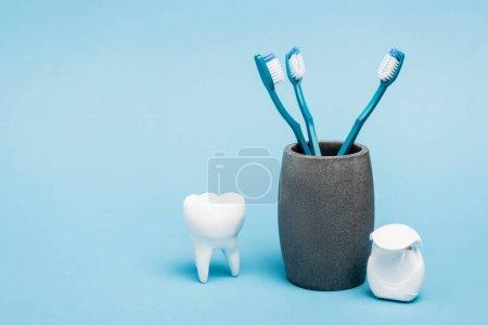 Zahnbürsten in der Nähe von Zahnseide und Zahnmodell auf blauem Hintergrund