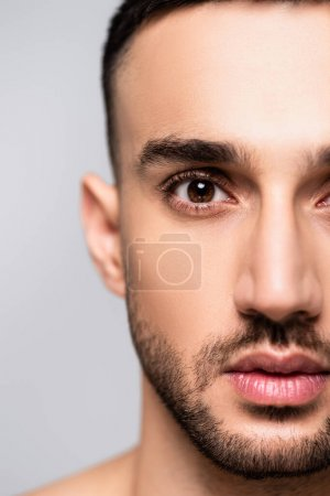 Photo for Close up view of bearded hispanic man looking at camera isolated on grey - Royalty Free Image