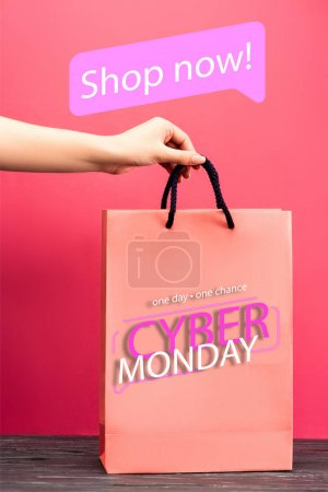 cropped view of woman holding shopping bag with one day, one chance, cyber monday lettering on pink, black friday concept