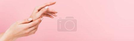 Photo pour Vue partielle de la femme appliquant de la crème cosmétique sur les mains isolées sur rose, bannière - image libre de droit