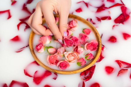 cropped view of woman holding tea rose near bowl with milky water