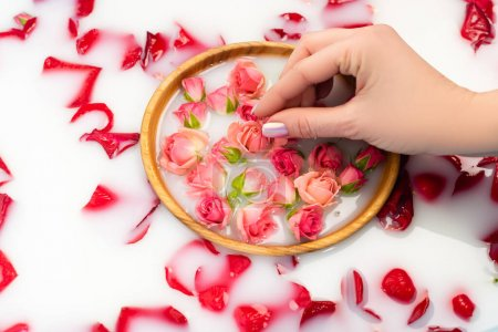 Photo pour Vue partielle de la femme tenant le thé rose dans un bol avec de l'eau laiteuse - image libre de droit