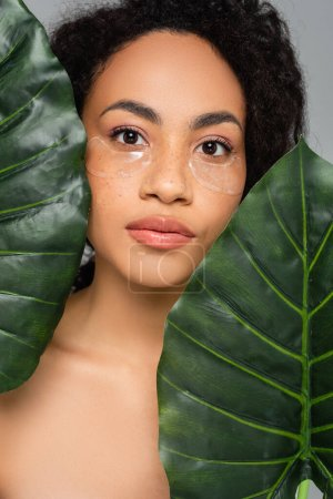 African american woman in eye patches looking at camera near green leaves isolated on grey