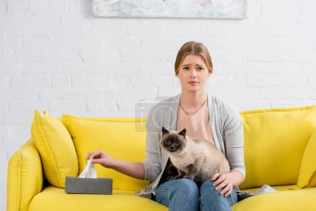 Sad woman with allergy looking at camera near box with napkin and siamese cat