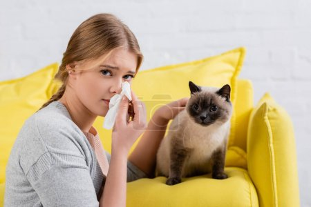 Young woman holding napkin during allergy snuffle near siamese cat on couch