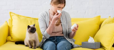 Photo pour Woman holding pills and napkin during allergy near siamese cat on sofa, banner - image libre de droit