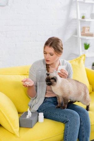 Photo pour Jeune femme allergique tenant des pilules et une serviette près du chat siamois - image libre de droit