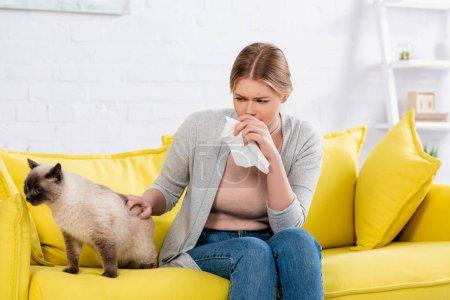 Photo pour Jeune femme souffrant d'allergie près du chat siamois sur le canapé dans le salon - image libre de droit