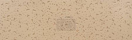 Photo pour Beige pastel, fond texturé avec des taches en relief, vue du dessus, bannière - image libre de droit