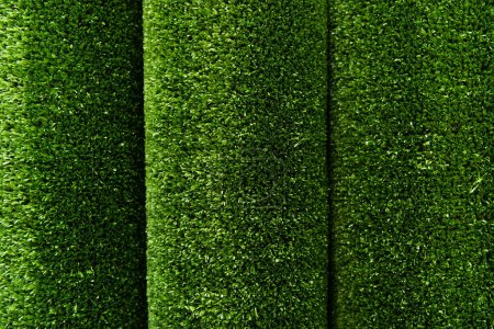 top view of green grass carpeting background, top view