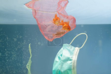 goldfishes in net, used medical mask and cellophane rubbish in water, ecology concept