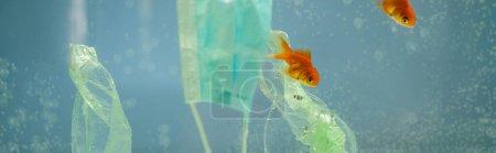 Zellophanmüll und medizinische Maske in der Nähe von Goldfischen im Wasser, ökologisches Konzept, Banner