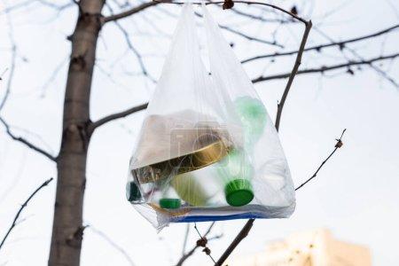 Plastikflaschen und Dose im Zellophanbeutel auf Baum, ökologisches Konzept