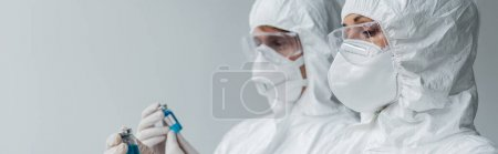 Photo for Scientists holding vaccines isolated on grey, banner - Royalty Free Image