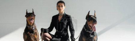 elegant woman in black blazer dress near doberman dogs on grey background, banner