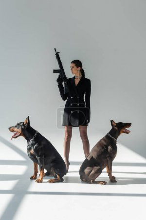 stylish woman holding rifle while looking away near doberman dogs on grey background with shadows