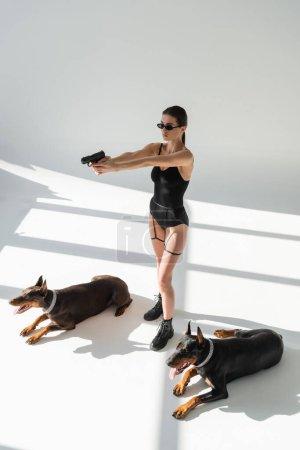 Photo pour Femme sexy en body visant avec arme près de dobermans sur fond gris avec des ombres - image libre de droit
