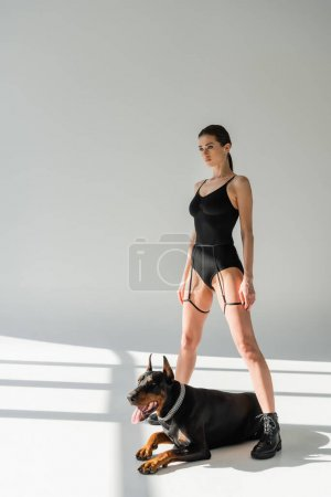 Photo for Sexy woman in black bodysuit standing near doberman dog on grey background with shadows - Royalty Free Image