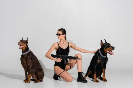 sexy woman in bodysuit and sunglasses holding rifle near dobermans on grey background