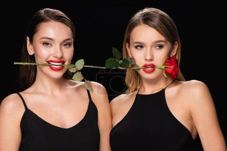 junge Frauen mit hellen Lippen halten rote Rosen in den Zähnen isoliert auf schwarz