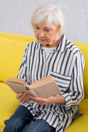 Photo for Elderly woman reading book on couch in living room - Royalty Free Image