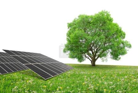 Foto de Paneles de energía solar con el árbol en el Prado. Energía limpia. - Imagen libre de derechos