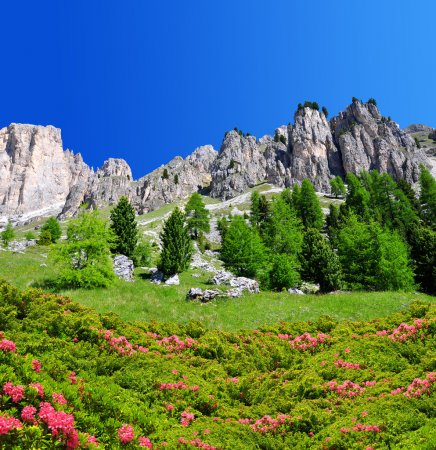Beautiful mountain landscape in Dolomites
