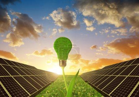 Foto de Paneles solares con foco en la planta contra el cielo del atardecer. Energía limpia. - Imagen libre de derechos