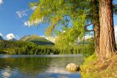 Mountain lake Strbske pleso in National Park High Tatras