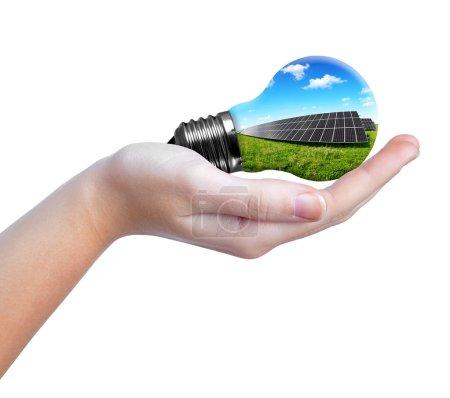 Foto de Paneles solares de mano en bombilla. Concepto de energía verde - Imagen libre de derechos
