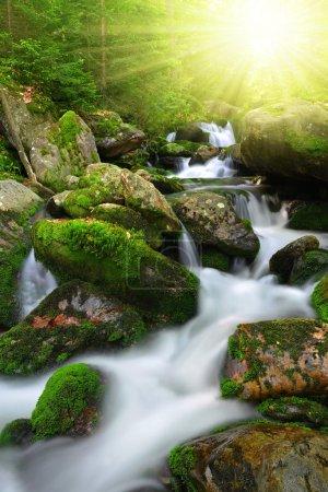 Photo pour Ruisseau de montagne dans le parc national Sumava-République tchèque - image libre de droit