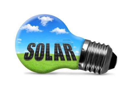 Photo pour Ampoule Eco isolée sur fond blanc. Concept d'énergie verte . - image libre de droit