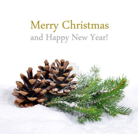 Foto de Ramas de abeto con conos. Feliz Navidad tarjeta. - Imagen libre de derechos