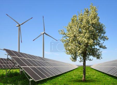 Solar energy panels with wind turbines.