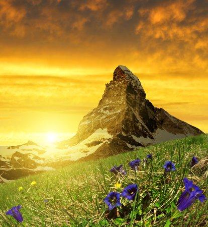 Belle montagne Cervin