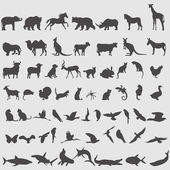 animal icons set