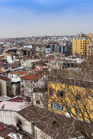 Istanbul, Turkey. April 28, 2011. A view of houses on the bank of the Bosphorus. Urban roofs.