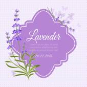 Greeting card invitation vector template with fragrant lavender