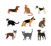 Cats and dogs vector illustration showing different breeds including a rottweiler  fox terrier  bloodhound   german shepherd and pitbull and different fur color in the cats
