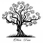 Olive tree silhouette Sketch wood painted black lines Vector illustration