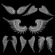 Set of sketch white wings on black background. Vec...