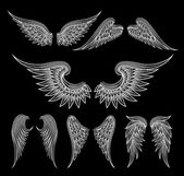 Set of sketch white wings on black background Vector illustration