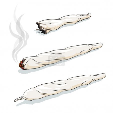 Illustration for Vector joint or spliff. Drug consumption, marijuana and smoking drugs - Royalty Free Image