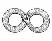 Snake curled in infinity ring Ouroboros devouring its own tail