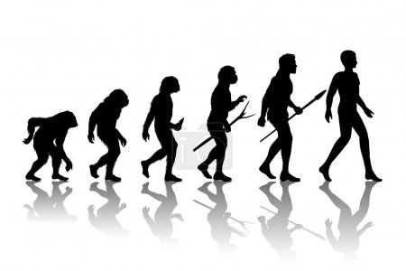 Man evolution