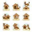 Cartoon dog in different poses to illustrate Engli...