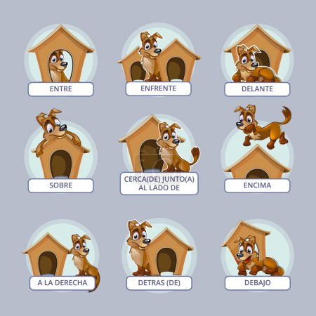 Cartoon dog in different poses to illustrate Spanish prepositions of place. Vector illustration for preschool kids